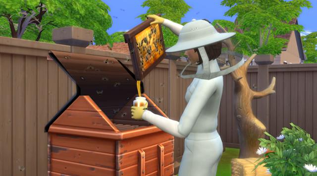 «The Sims 4»: Пчеловодство — обзор, советы и рекомендации